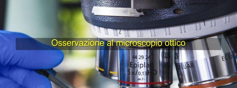 osservazione-al-microscopio-ottico